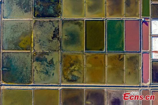 Aerial view of salt fields in Weihai, China's Shandong