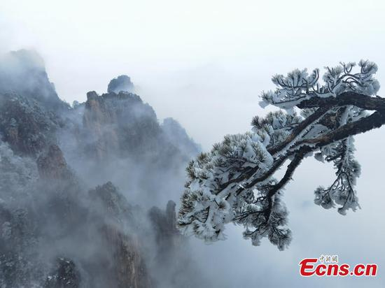 Rime scenery of Mount Huang in Anhui Province