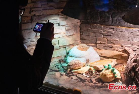 Beijing Zoo dresses small animals to help them keep out cold